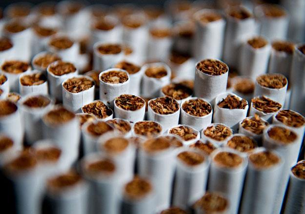 Розничная торговля алкогольными напитками табачными изделиями сигареты липецк оптом